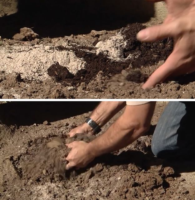 Charmant How To Amend Clay Soil   The Homesteaderu0027s Guide | Gardening Ideas And Tips  By Pioneer