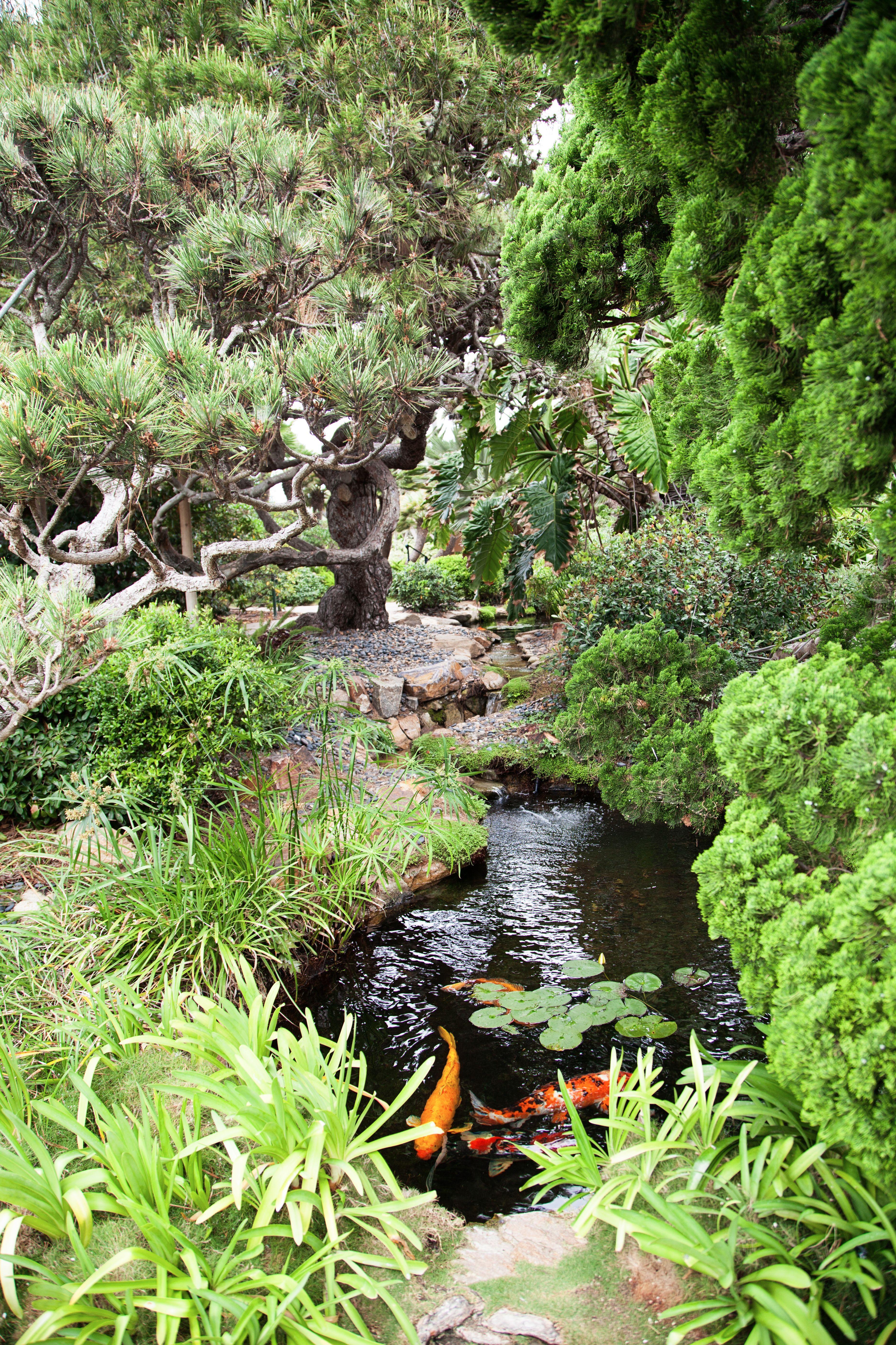 Delicieux Meditation Gardens In Encinitas // My SoCalu0027d Life