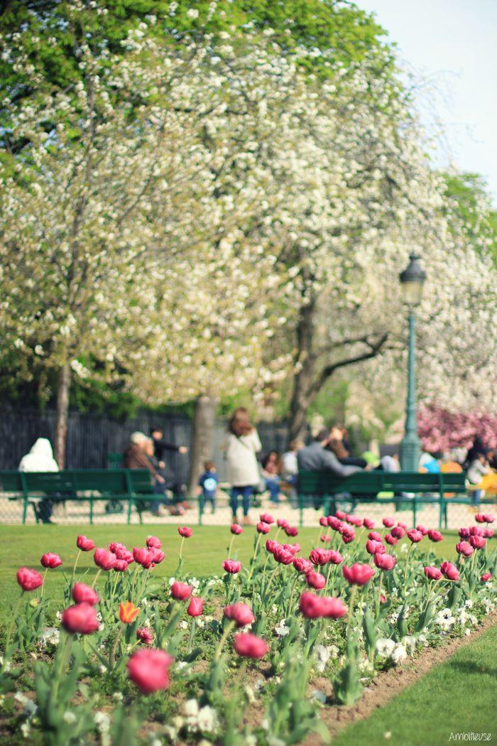 Pin en Primavera en la ciudad