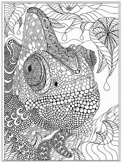 Pin Su Coloring Pages For Adults
