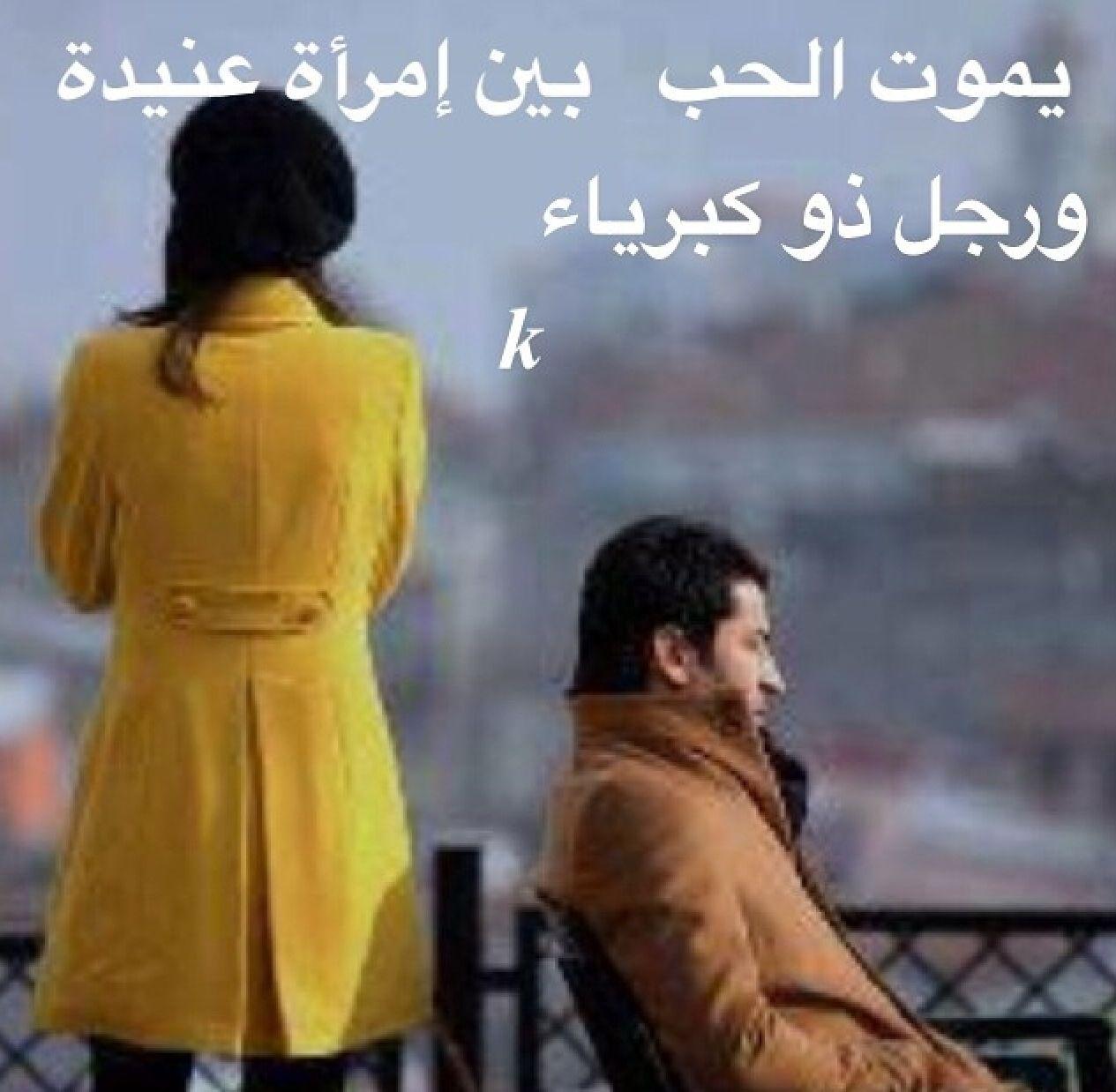 يموت الحب بين إمرأة عنيدة ورجل ذو كبرياء Arabic Quotes Words Quotes