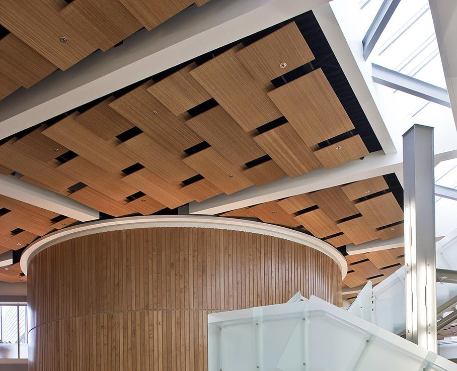 Plyboo Bamboo Plywood Install At The University Of Alaska