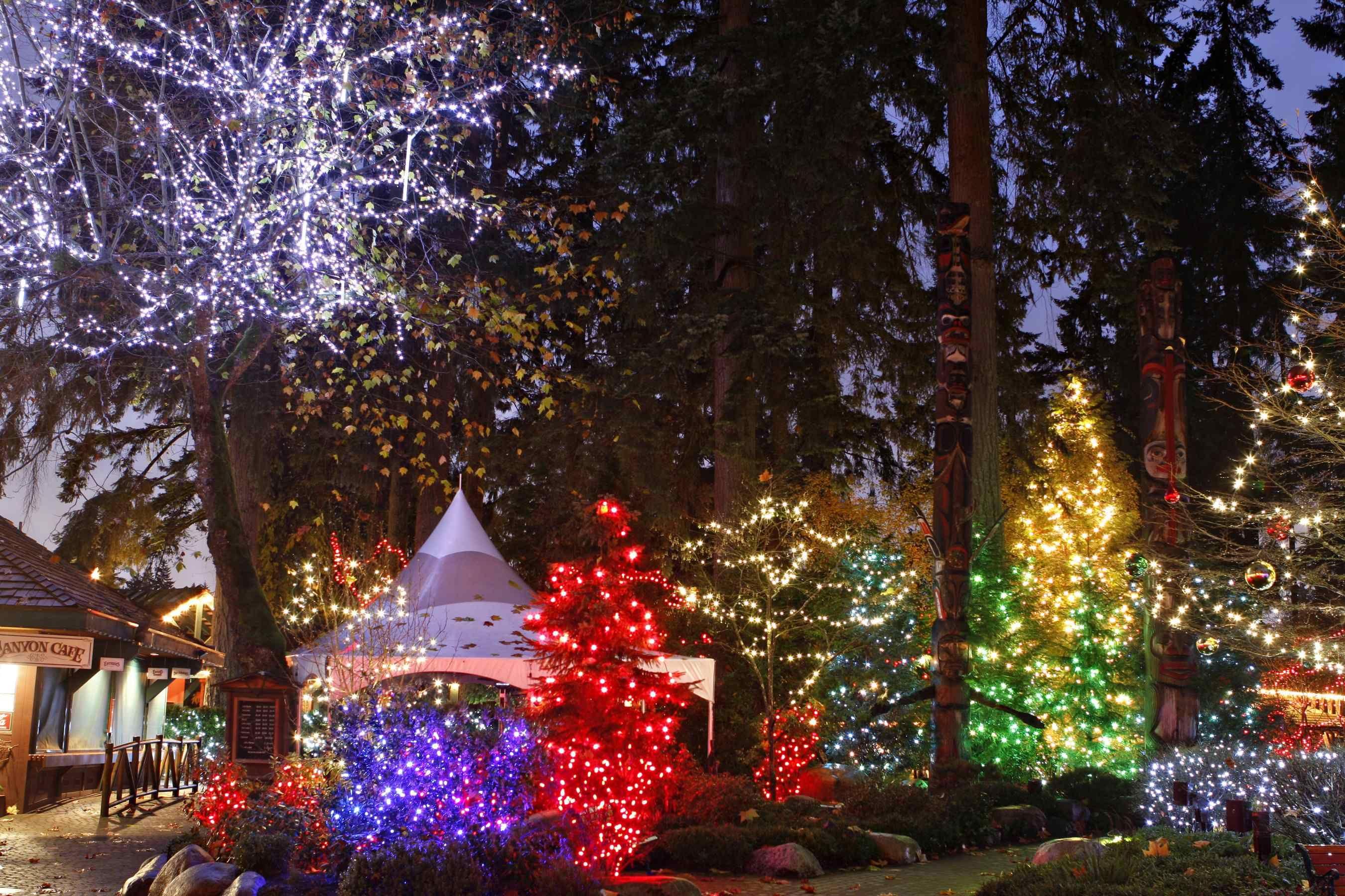 Canyon Lights Christmas Events North Vancouver Christmas Events Suspension Bridge Canada Christmas