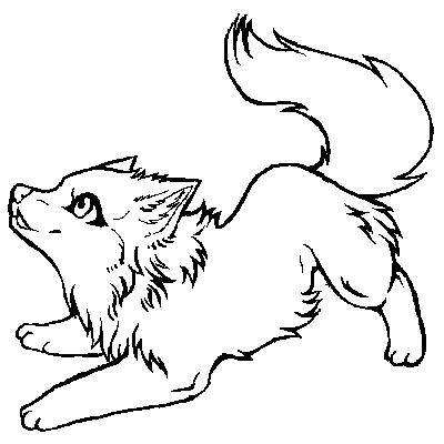 Baby Wolf Anime