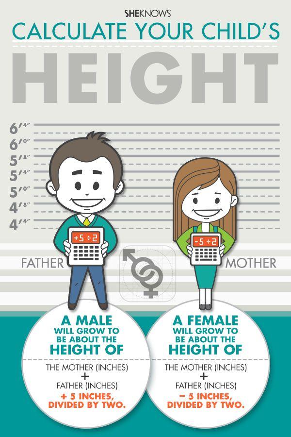 many factors influence adult height children. Black Bedroom Furniture Sets. Home Design Ideas