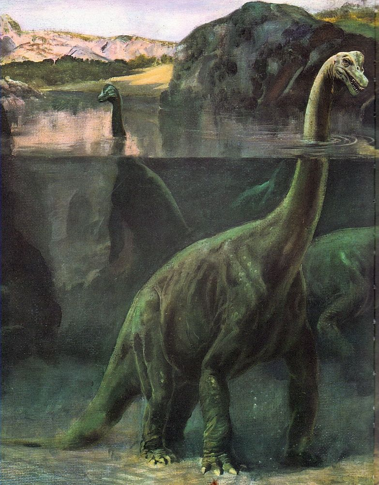Brachiosaurus Late Jurassic 154 153 Ma Discovered By Riggs 1903 Artwork Charles R Knight Note Probably Not The Correct Habitat