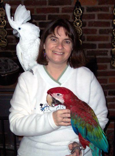 Dr Ann Bourke Avian Vet Ashford Ct Avian Bourke Vets