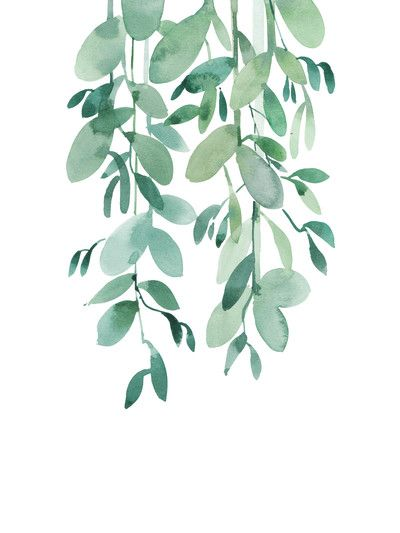 Pin By Trang Doan On Plants In 2019 Watercolor Leaves Art