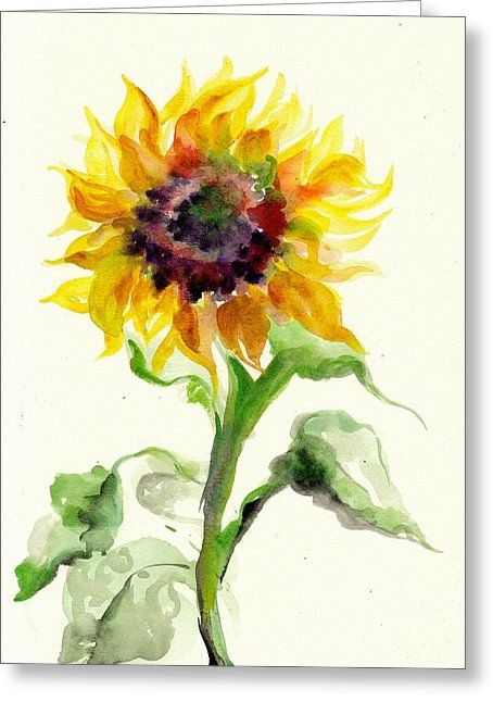 Sunflower Watercolor Watercolor Sunflower Watercolor Sunflower
