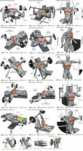 Chest Workout At Home For Strength And Mass