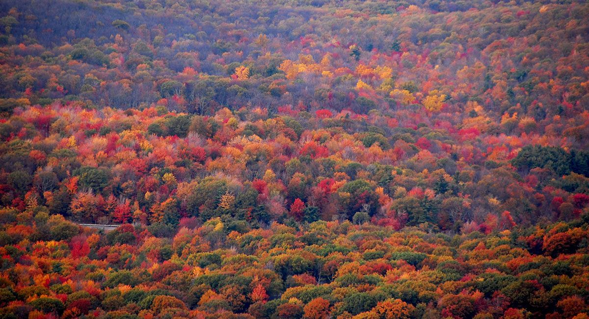 Pin by Eliane Ott on PAYSAGES ET NATURE Fall travel