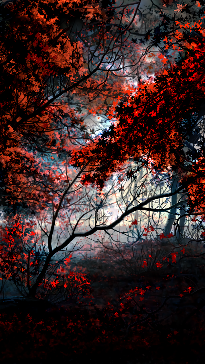 Trees Autumn Red Leaves Forest Artwork 720x1280 Wallpaper Desktop Wallpaper Autumn Forest Love Wallpaper