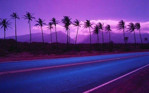 Pin On I Love Purple