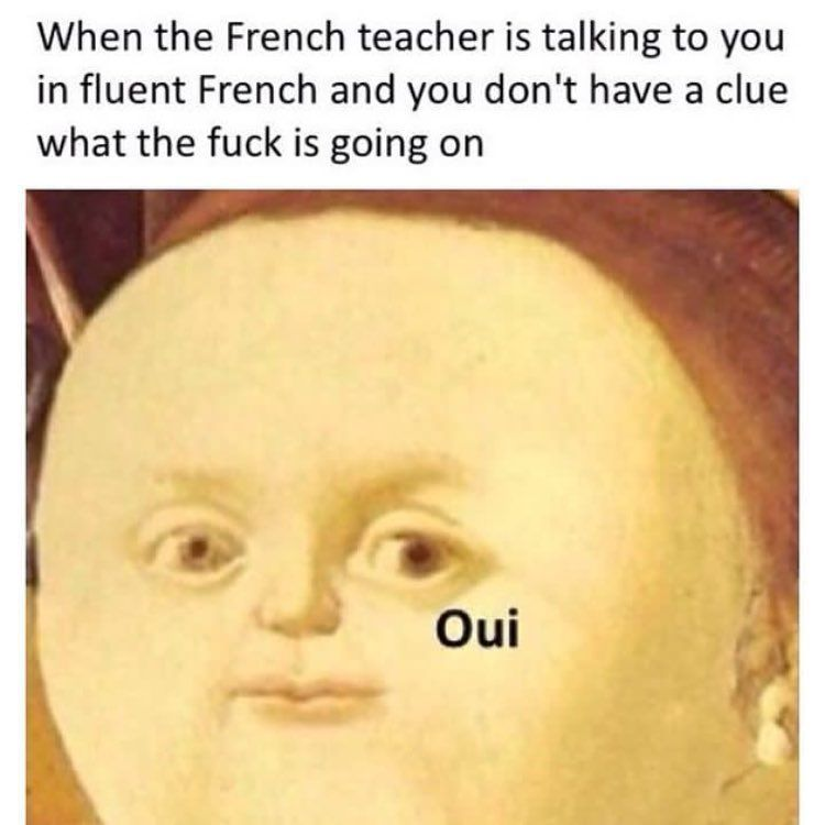 29 Memes That Will Make You Laugh So Much You Might Do A Little Wee Memes Sarcastic French Meme How To Speak French