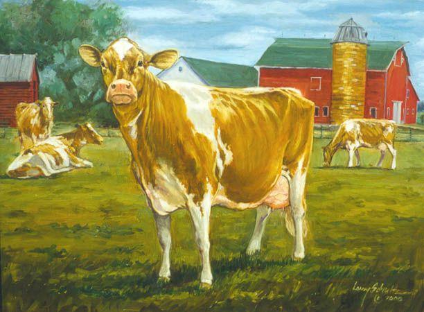 Golden Goodness Guernsey cows Guernsey cow