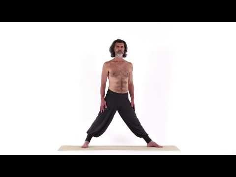 extended triangle pose  parshva trikona asana  http