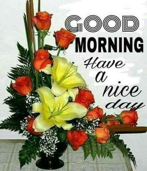 Have A Nice Daygood Morning Morning Good Morning Morning