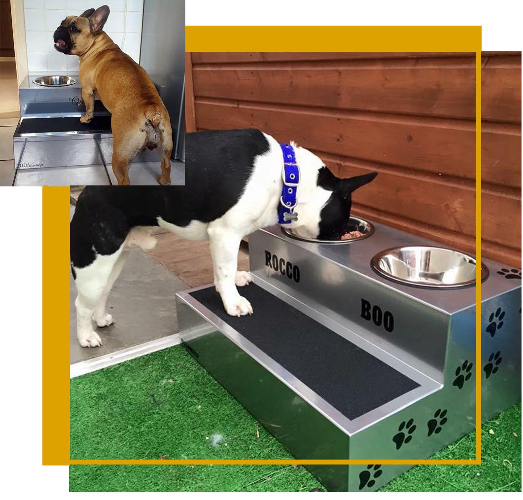 willowstep Raised dog feeder, Pets, Dog feeder