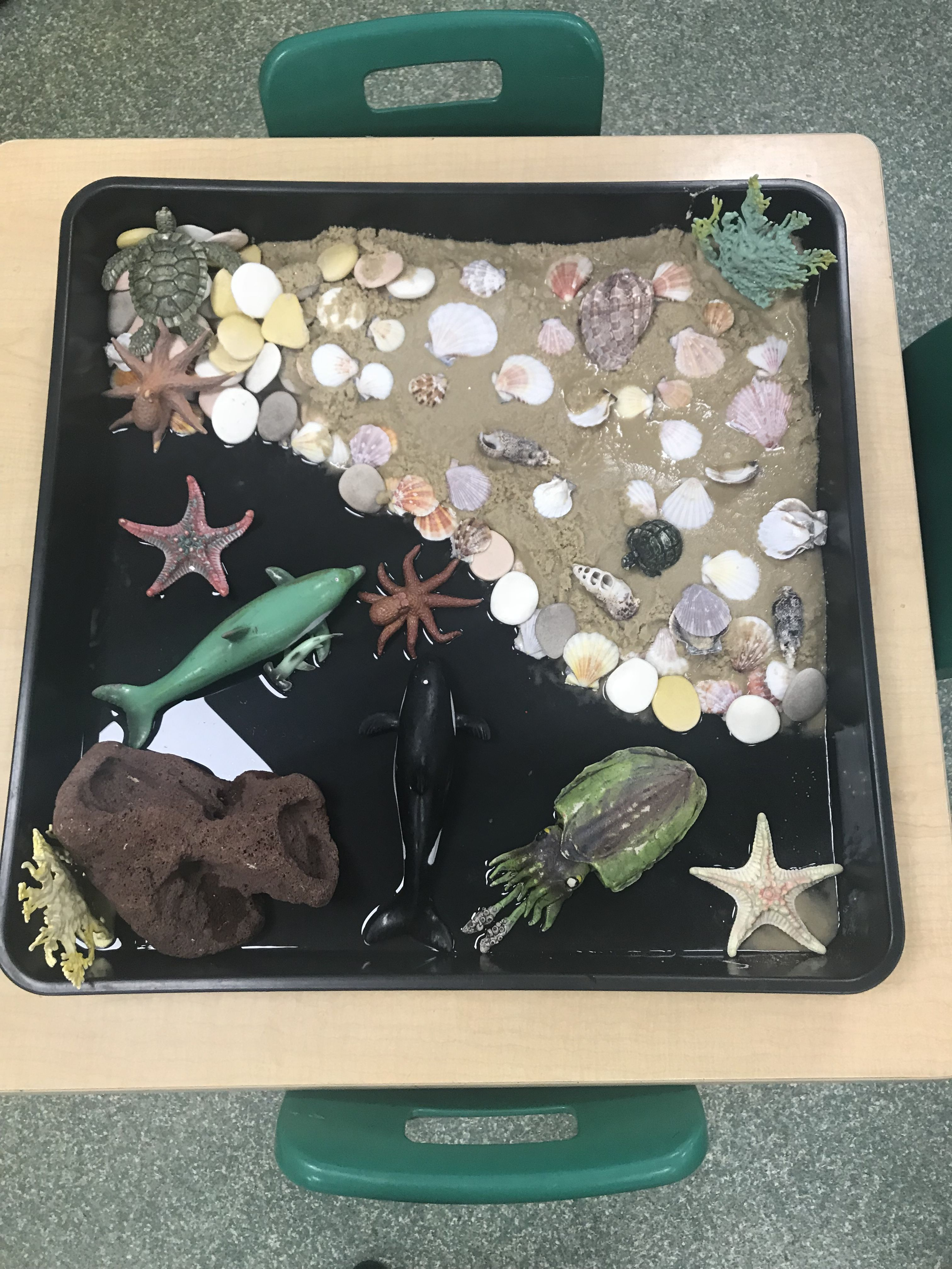 Eyfs Under The Sea Commotion In The Ocean Early Years