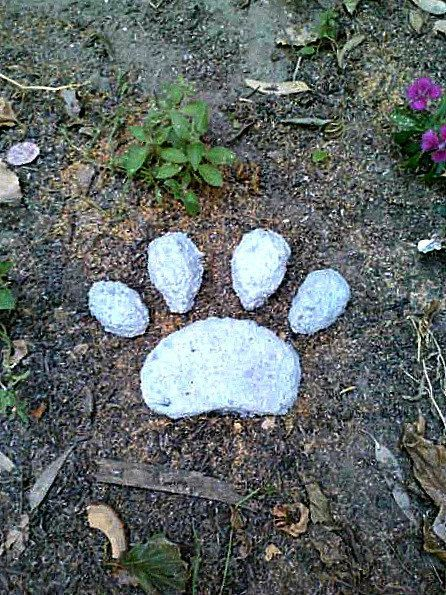 Httpsetsylisting109466330stepping stone paw print items similar to stepping stone paw print pet memorial concrete stone dog paw on etsy publicscrutiny Image collections