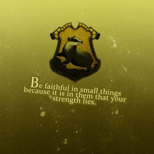 Hufflepuff Huffelpuf Tunichtgut Harry Potter