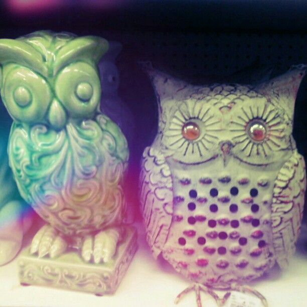 im famous;) some store posted my pic lol... From @ladygruj: I like #owls. #tuesdaymorning #windowshopping #adorable - #webstagram