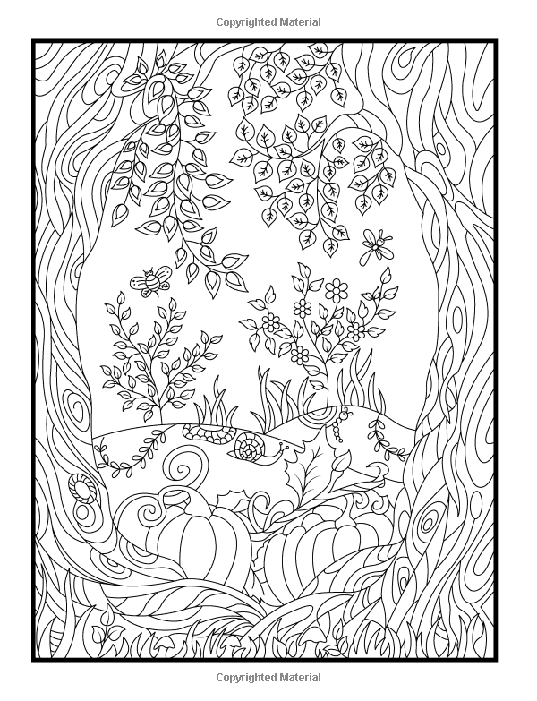 Amazon Hidden Garden An Adult Coloring Book With