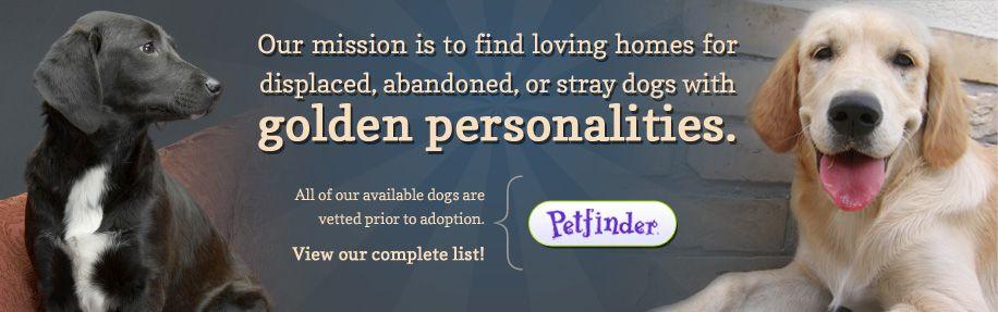 good karma dog rescue uk