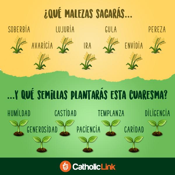 Biblioteca de Catholic-Link - ¿Qué malezas sacarás y qué semillas plantarás esta...