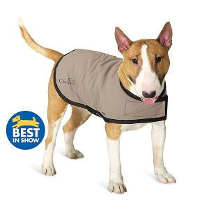 Daily Diy Pet Pattern How To Make A Doggie Cooling Vest Diy