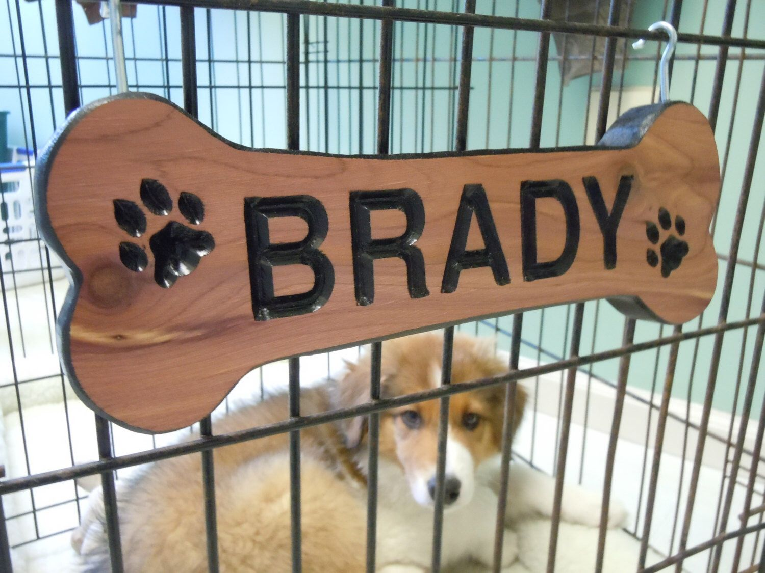 Dog Bone Shaped Sign Family Pet Name Personalized Wooden Carved
