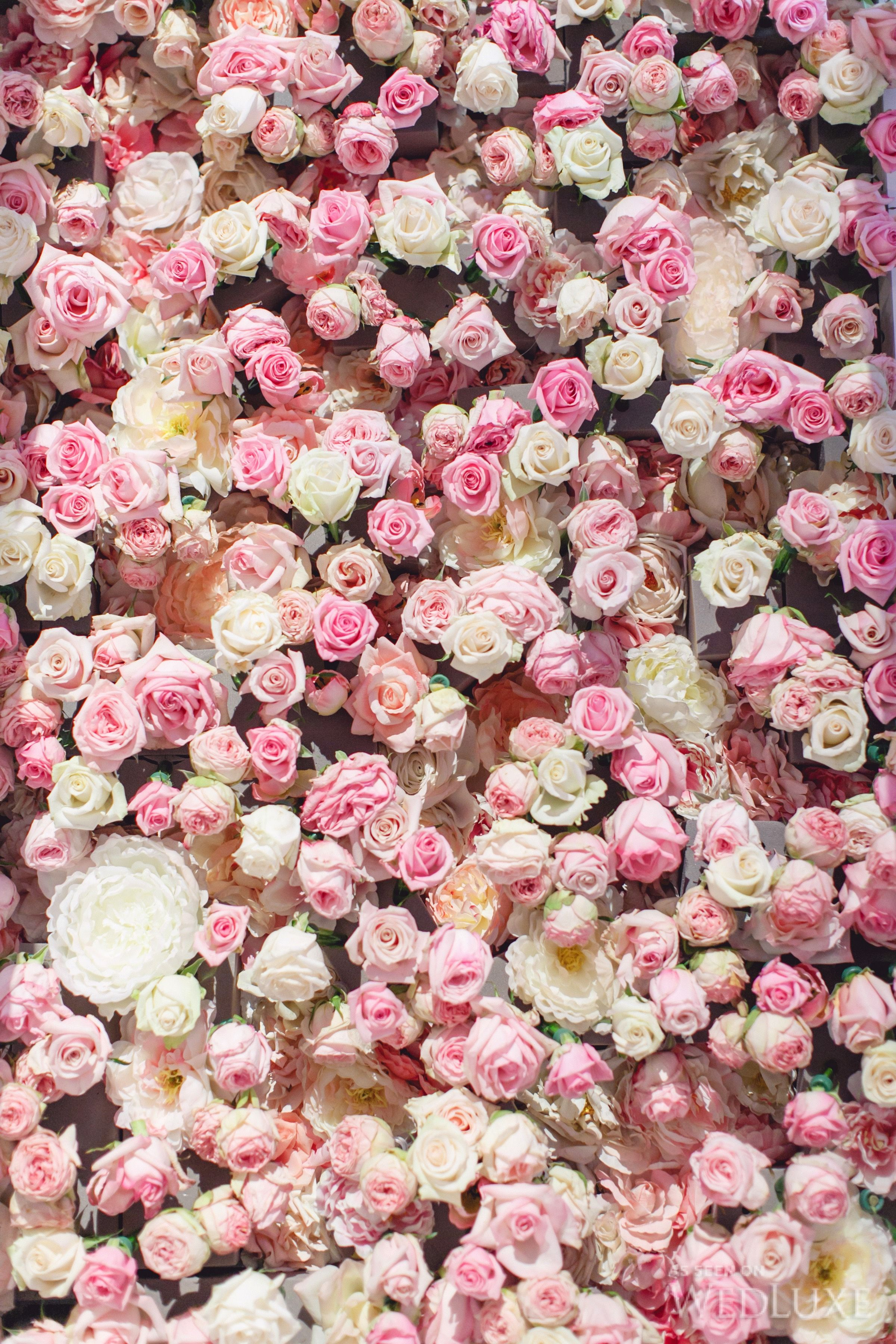 Gallery From Last Event Flower aesthetic, Pink flowers