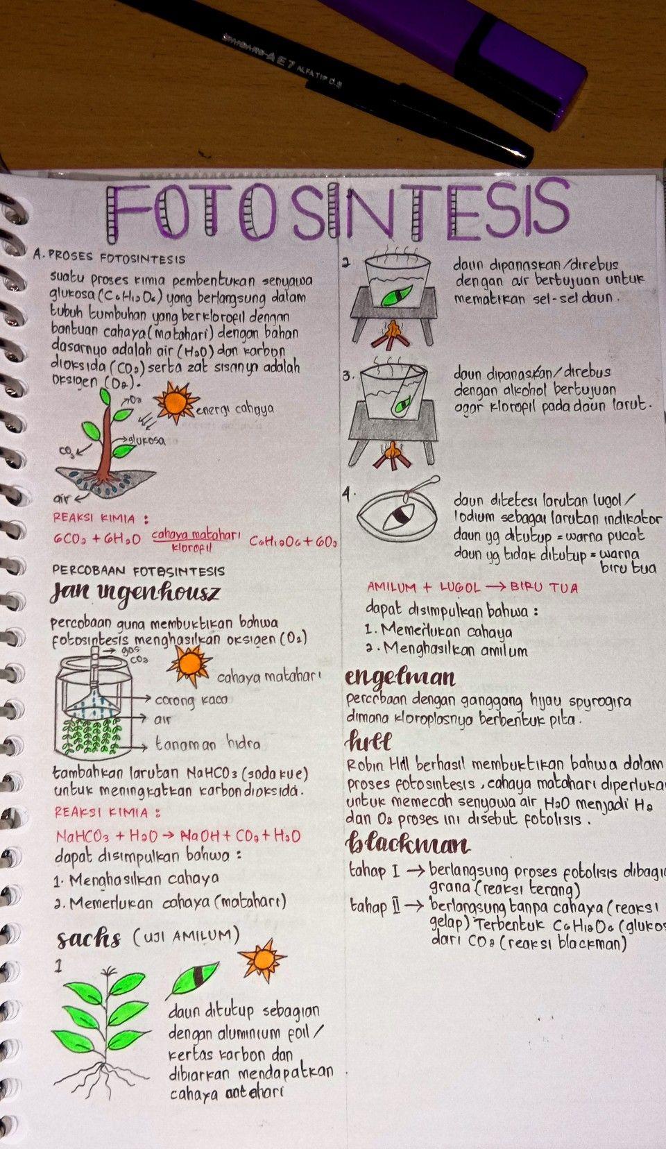 Schoolnotes Studyhard Lettering Rangkuman Materi Ipa Pelajaran Matematika Motivasi Belajar Buku Pelajaran