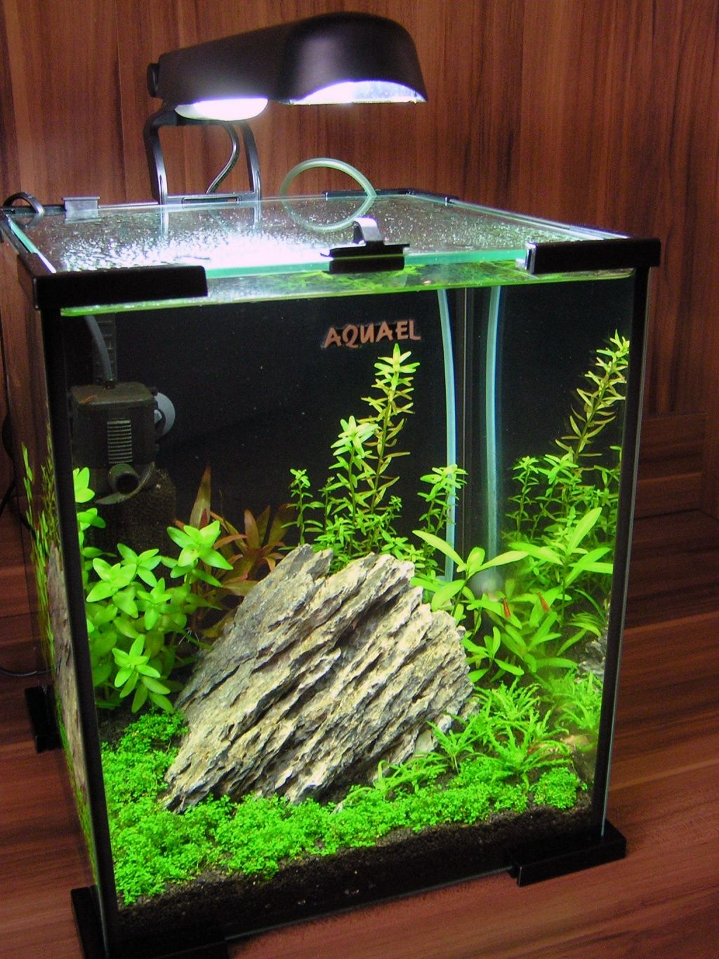 Small nano aquarium fish tank tropical - Aquael Shrimp Set 20l Nano Aquarium