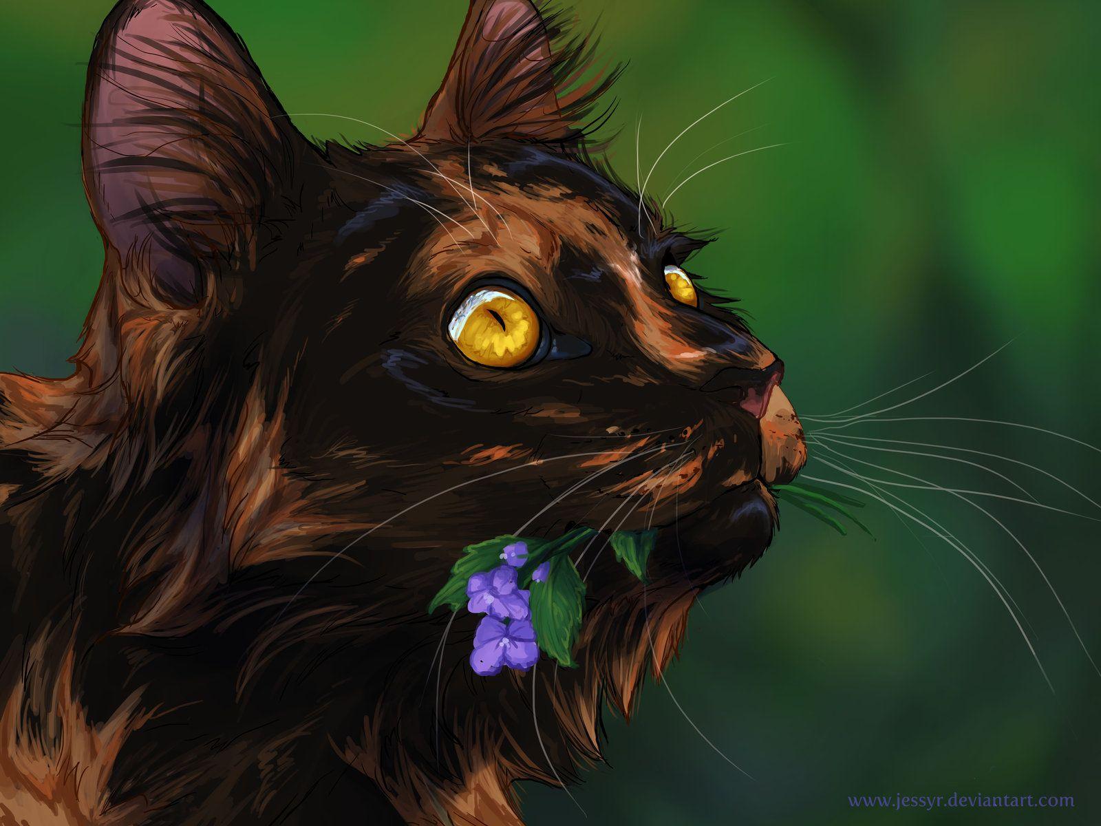 The Most Lovely Spottedleaf Anime Katze Warrior Cats Katzen