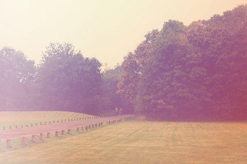October 28, 2012 • Life Through The Lens • #006 // - AimeeMarie.com