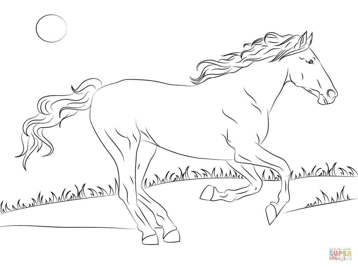 Beautiful Mustang Horse coloring page | Free Printable Coloring ...