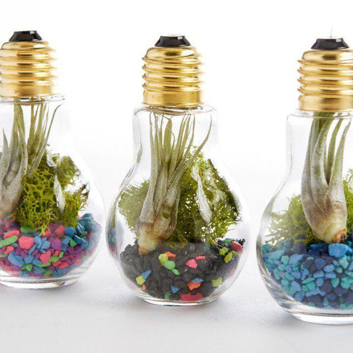Terrarium pour plantes - tuto pour le faire et plus de 70 super - des idees pour decorer sa maison
