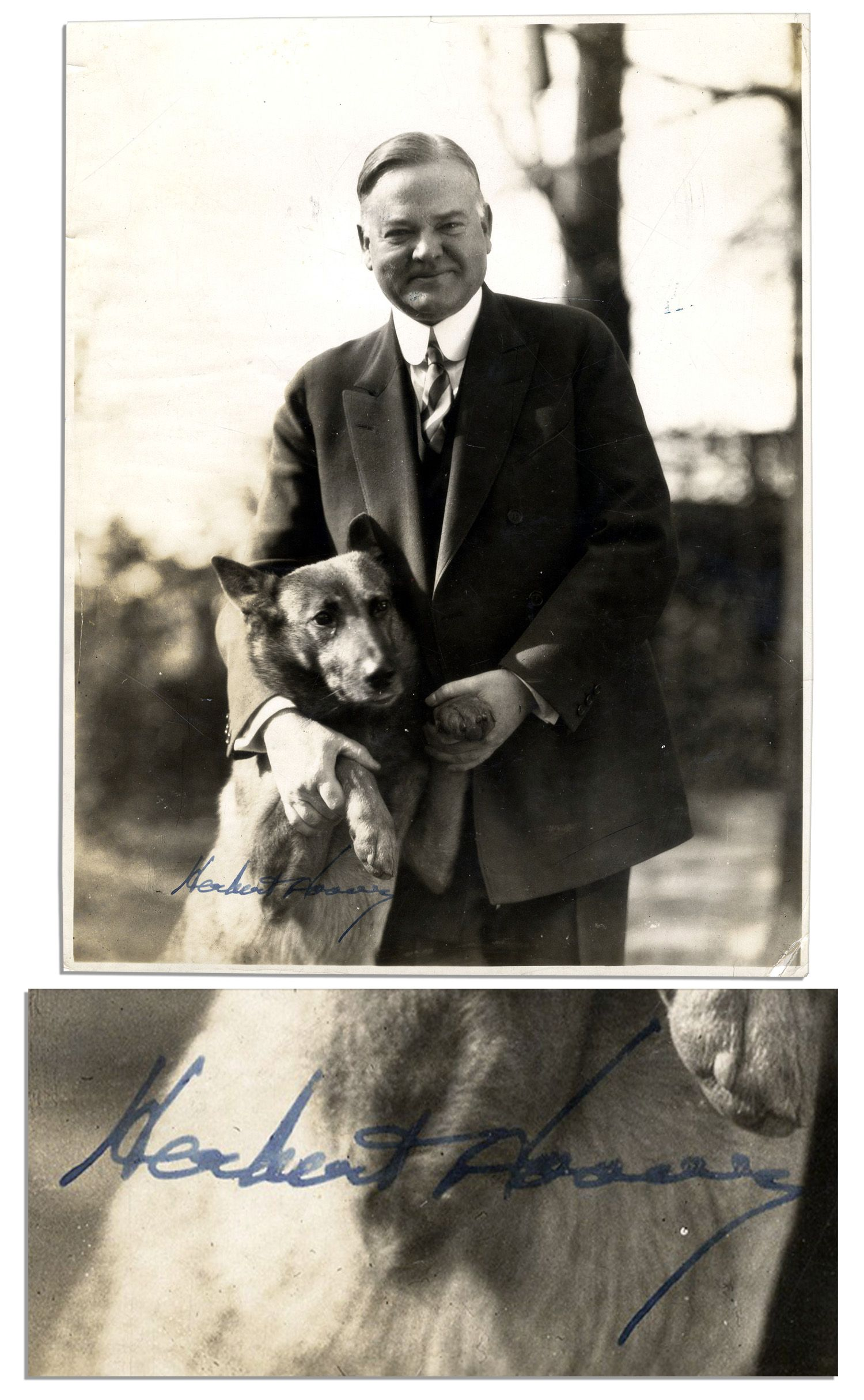 herbert hoover and his dog - Google Search