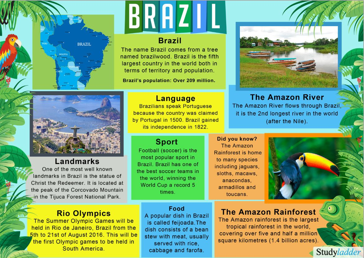 Brazil: Fact Sheet - Click to download. | Brazil facts, Brazil ...