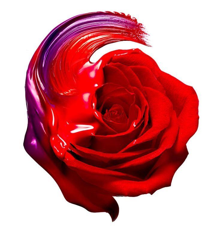 001-keate-photography-still-life-the-red-list.jpg (728×817)