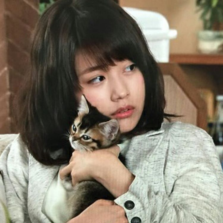 ゆうだい on instagram 有村架純 猫になりたい 有 村 かすみ 有 村 有村架純 かわいい