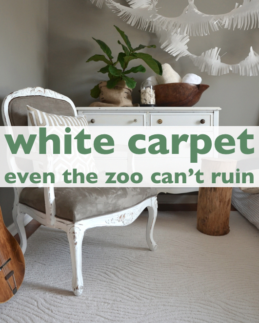 Best Cheap Carpet Runners By The Foot White Carpet In 2019 400 x 300