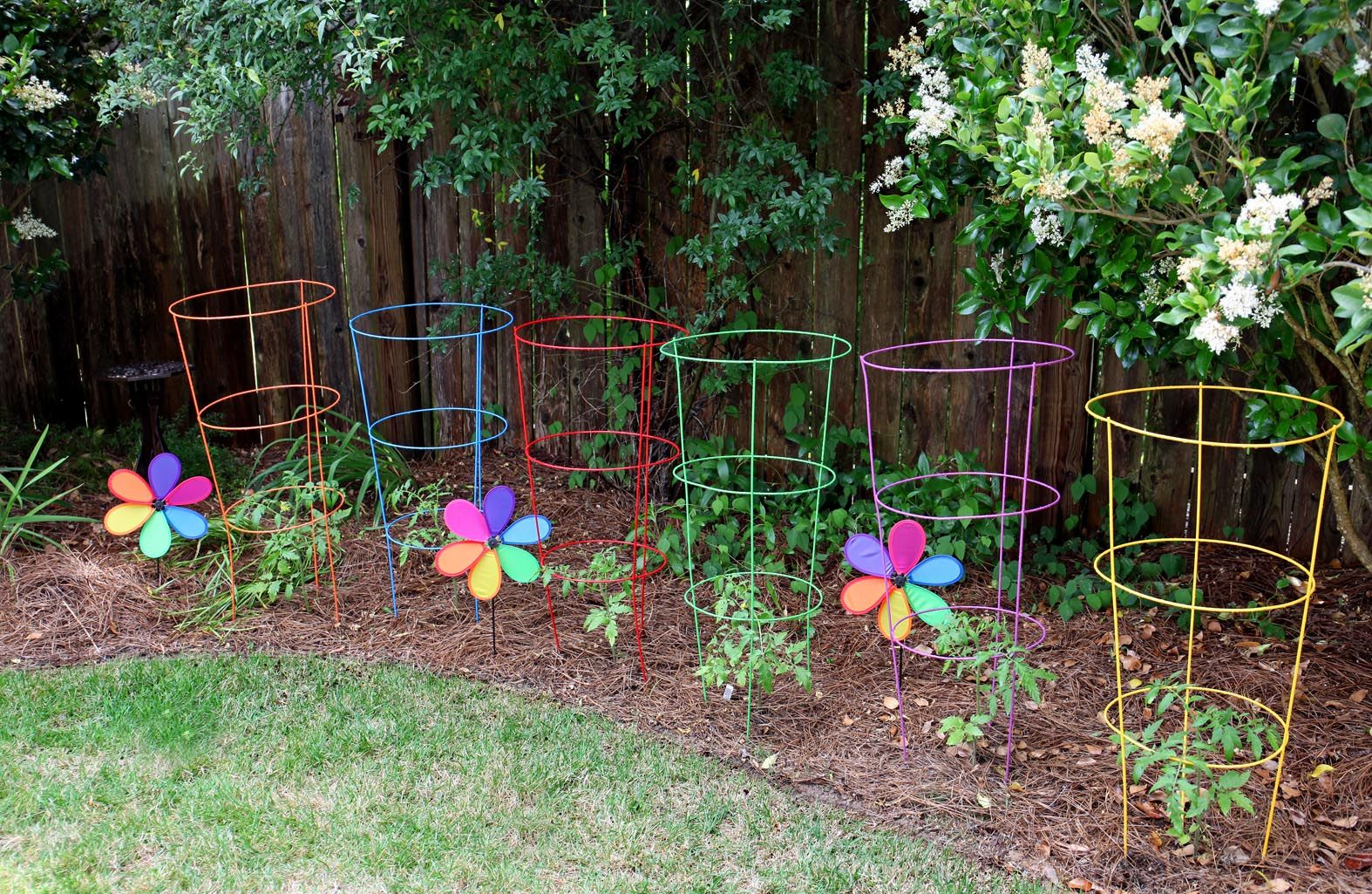 I Couldn T Resist These Brightly Colored Tomato Cages At 400 x 300