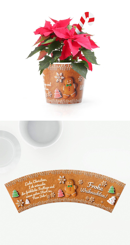 weihnachtsw nsche blumentopf geschenke f r oma und opa zu weihnachten weihnachtsw nsche
