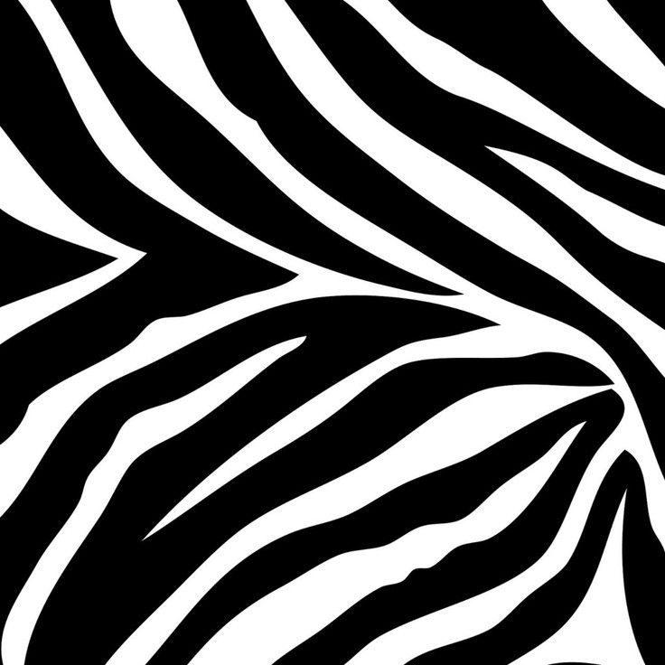 pink zebra wallpaper for bedrooms zebra print wallpaper for bedrooms design hd wallpapers 19491