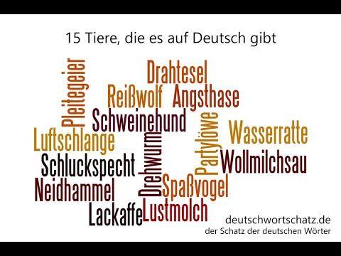 15 Tiere Die Es Auf Deutsch Gibt Deutschwortschatz De Youtube Mit Bildern Deutsche Worter Worter