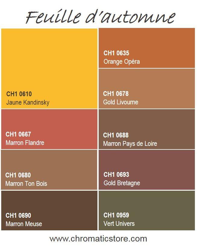 D clinaison de couleurs chaleureuses inspir es de la nature automnale - Couleur complementaire du marron ...