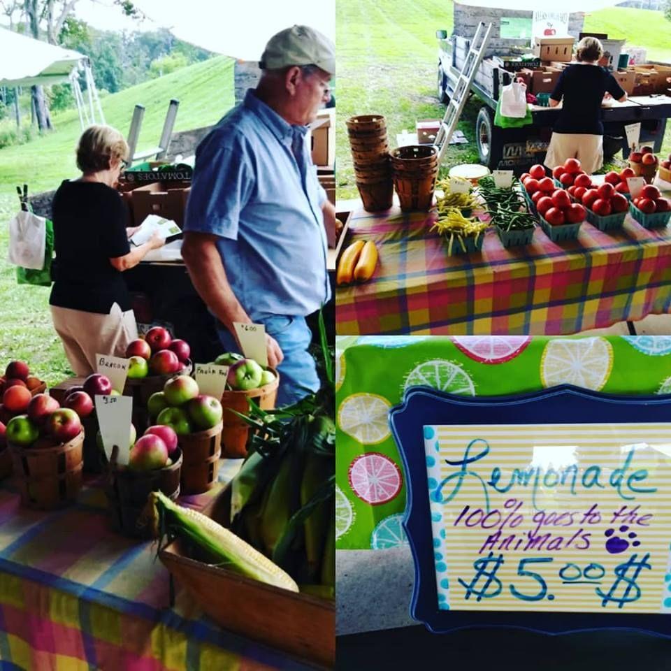 Thursday Is A Market Day Hillside Park Farmers Market In South Abington Township Pennsylvania 2 6pm Https Www Farmer Hillside Park Farmers Market Farmer