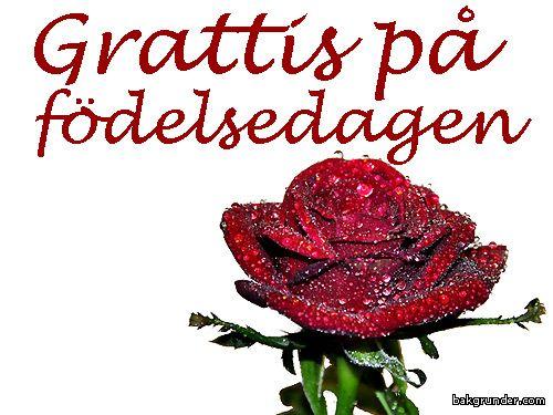 grattiskort på födelsedagen Grattis på födelsedagen | Svenska Naturvykort | Grattis på  grattiskort på födelsedagen